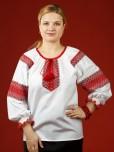 Жіноча вишиванка ЖБ 90-8
