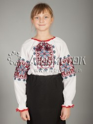 Вишита блуза ЖБВ 19-2