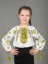 Вишита блуза ЖБВ 33-3