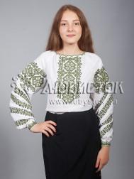 Вишиванка-блуза ЖБВ 9-3