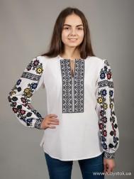 Вишиванка-блуза B-026-01