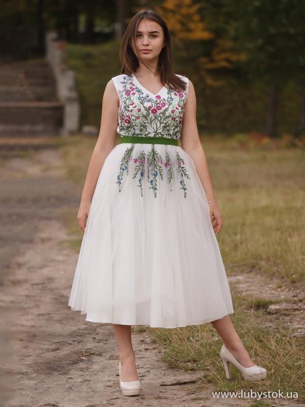 Вишита сукня D-092-01