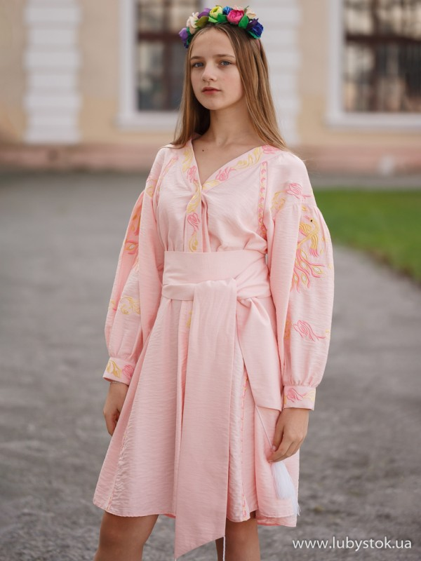 Вишита сукня D-093-01