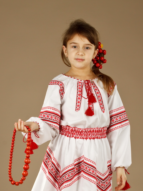 Вишита блуза ЖБ 88-17