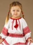 Вишита блуза ЖБ 94-11